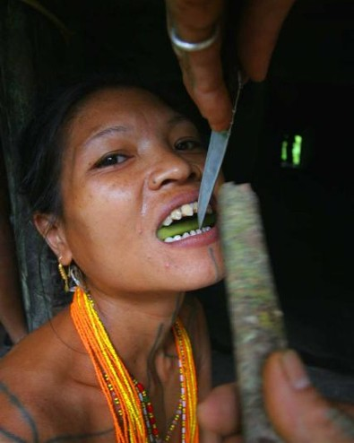 Defining Beauty: Tribe, Culture, and Tradition